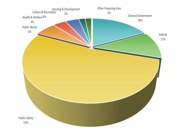 Pie chart showing Henry County budget expenditures (Henry County photo)